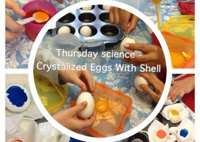 crystalized-eggs-with-shell